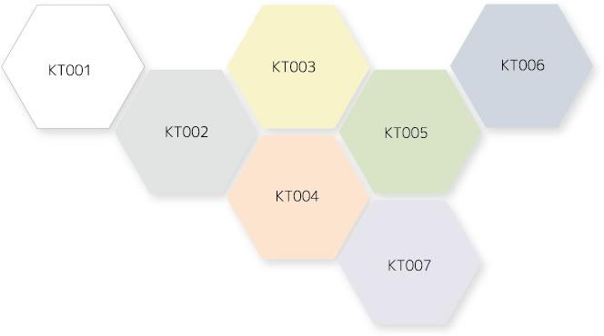 KAI・TEKI 365  Color variations